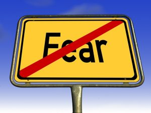 no fear Lisa Ryan chief appreciation Strategist at Grategy